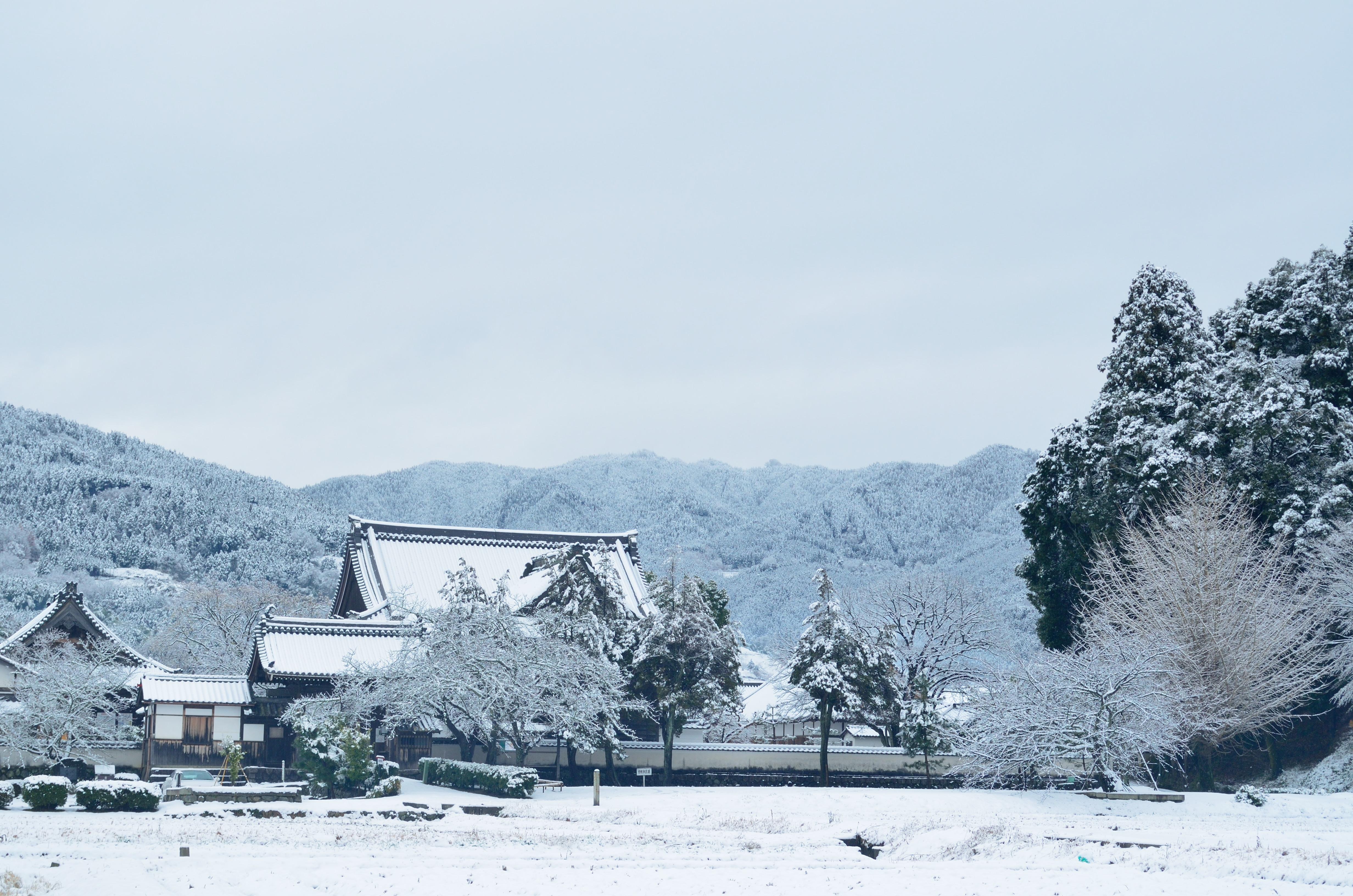 橘寺 雪景色