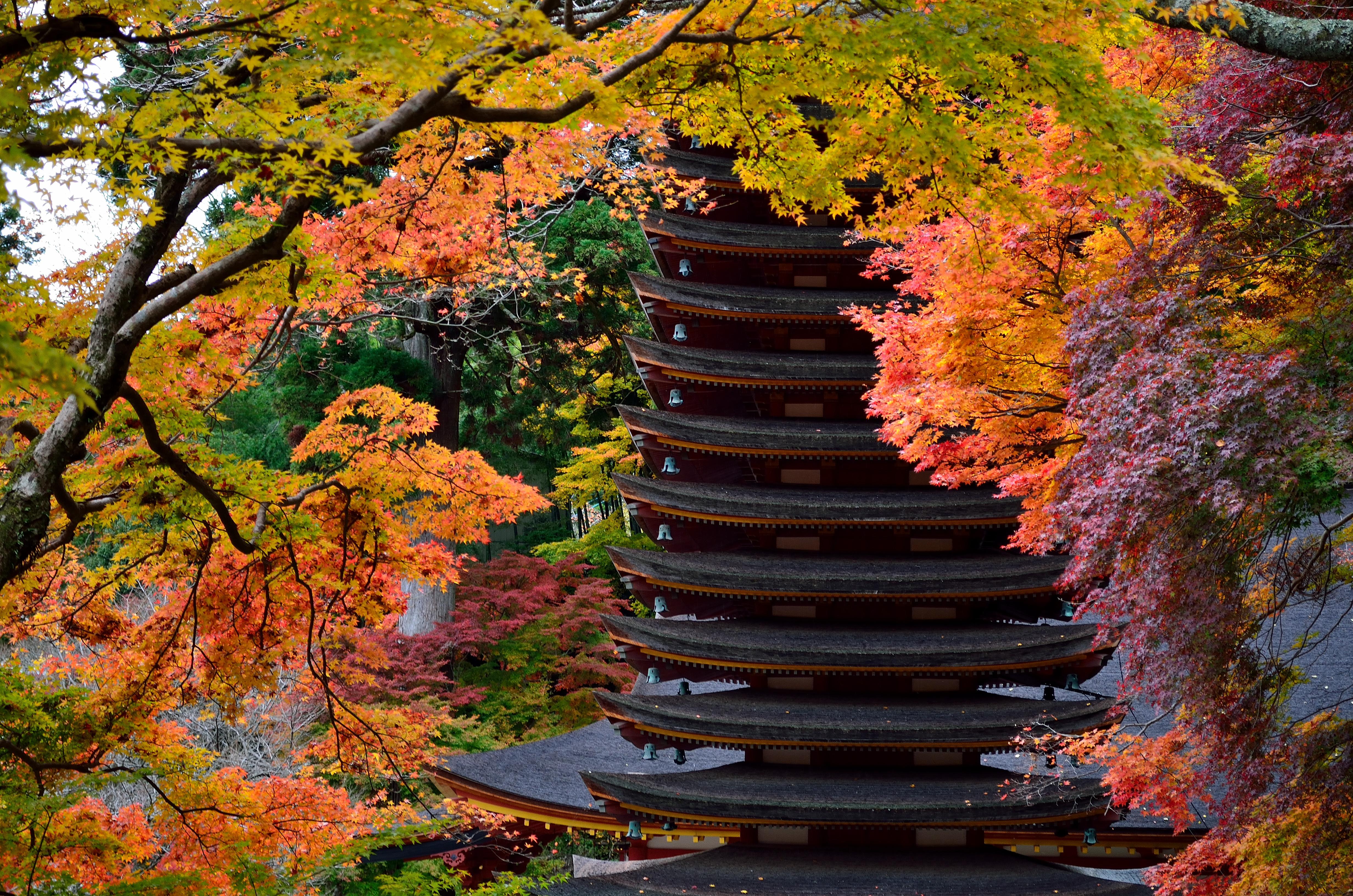 談山神社の十三重塔と紅葉