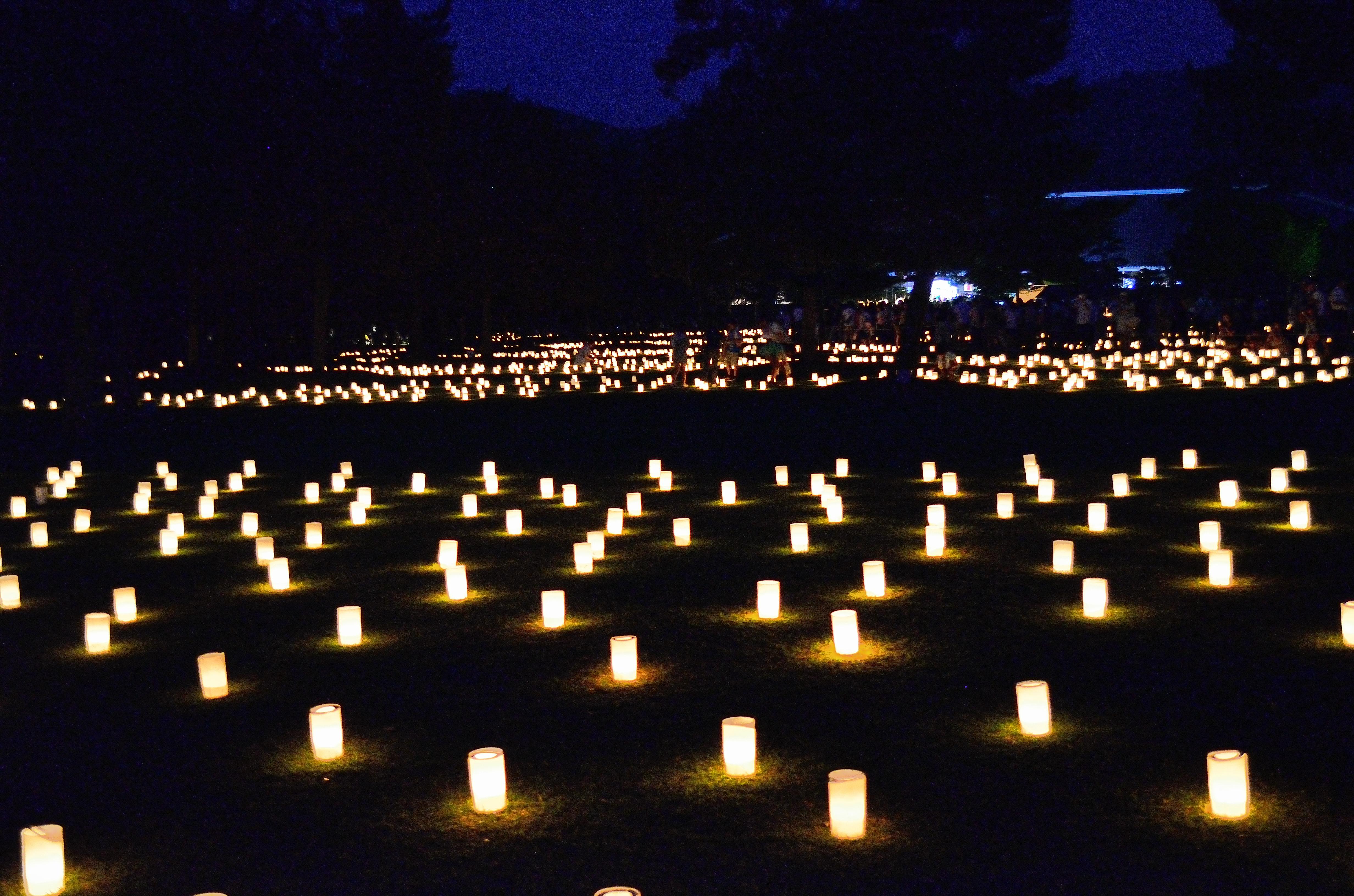 なら燈花会2013 浮雲園池の燈花風景