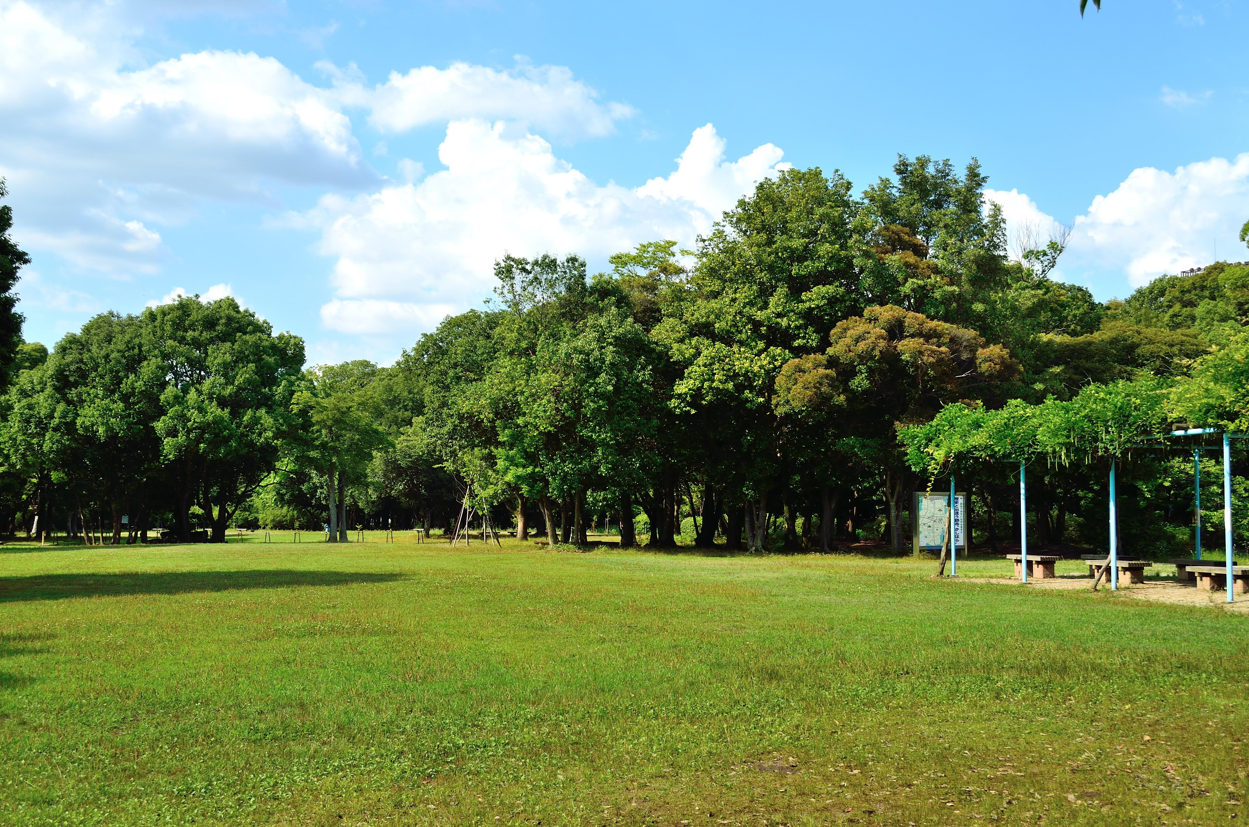 橿原神宮 森林遊苑