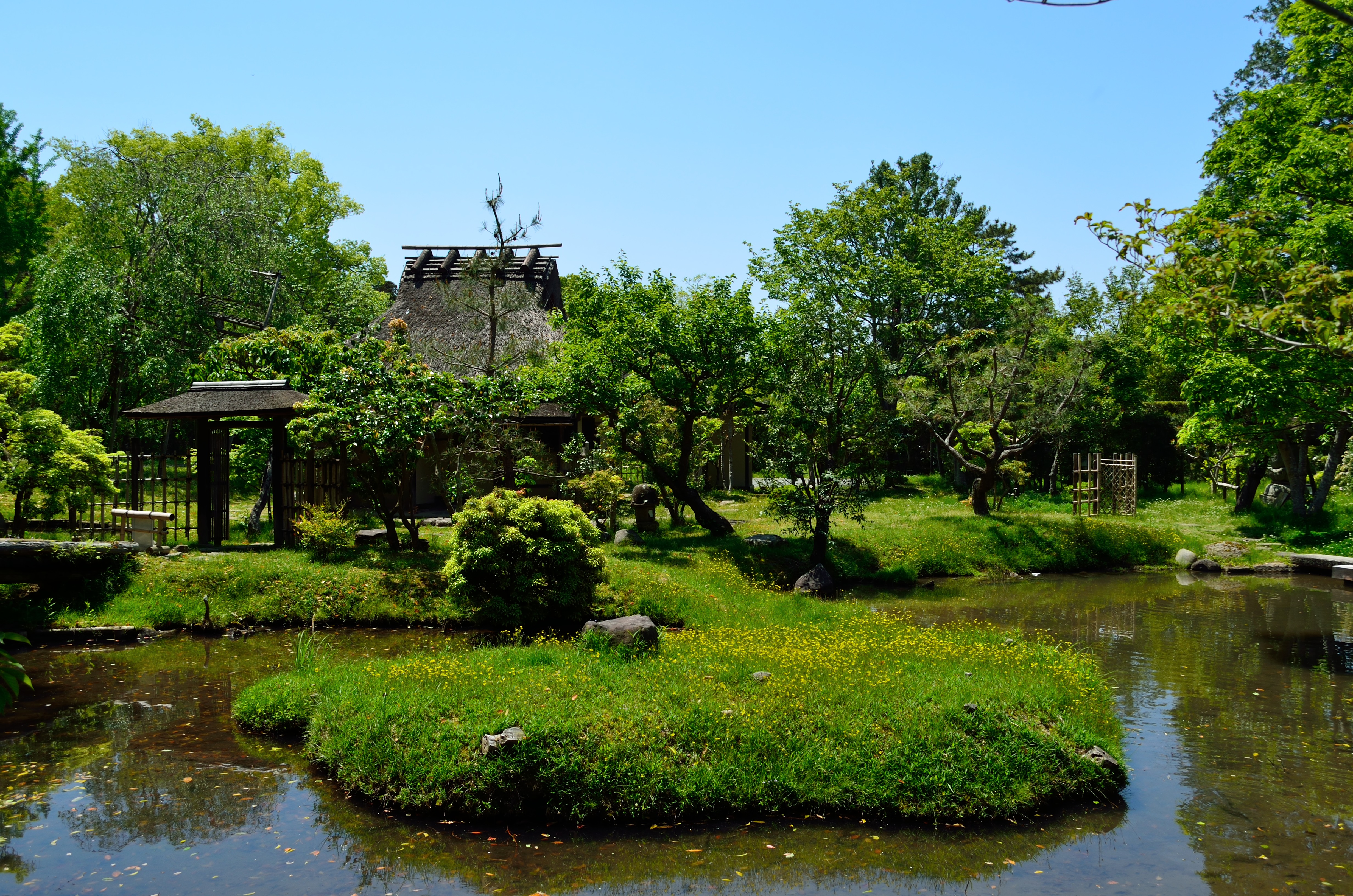 奈良国立博物館 心字池