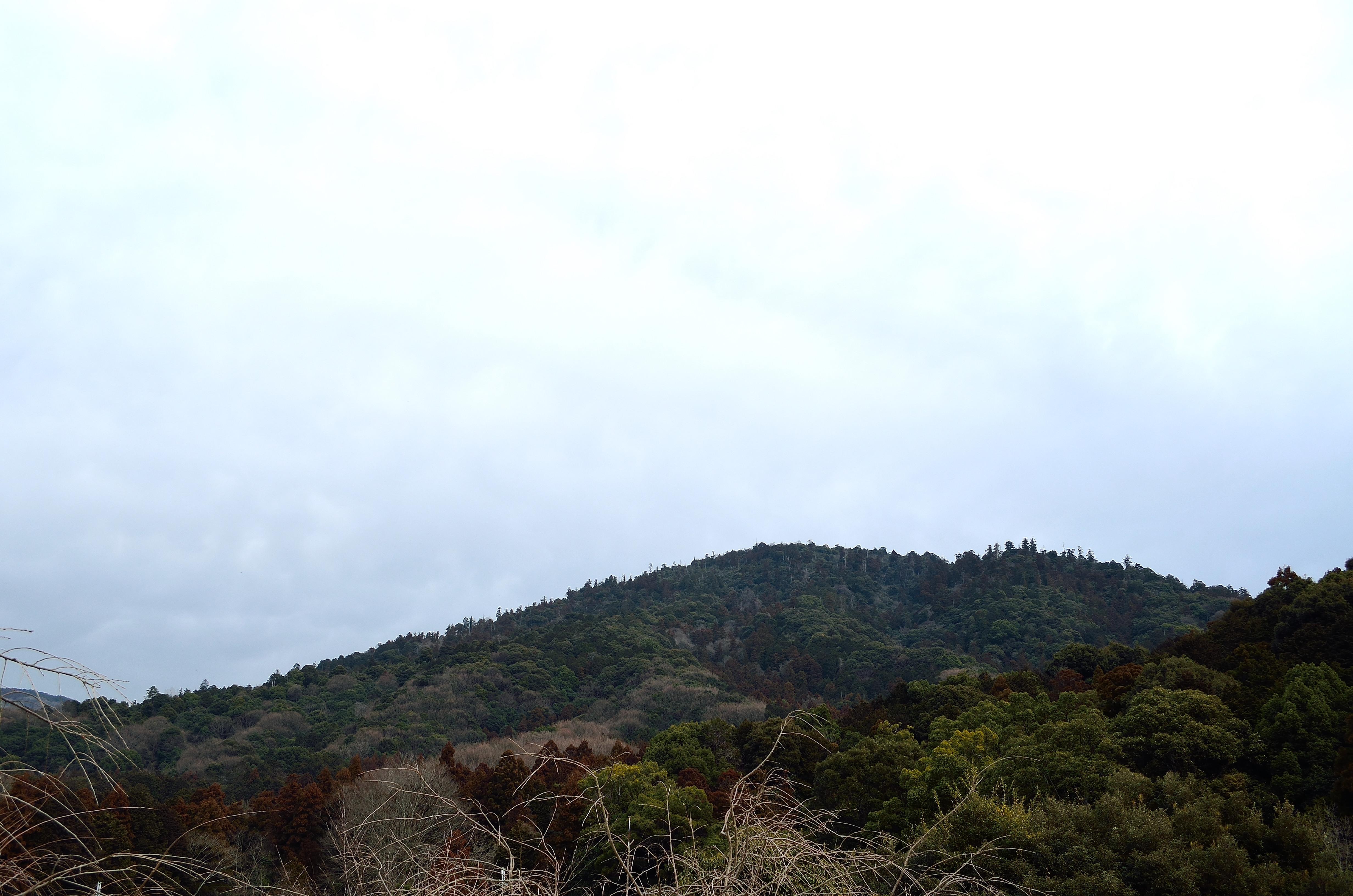 大神神社 三輪山