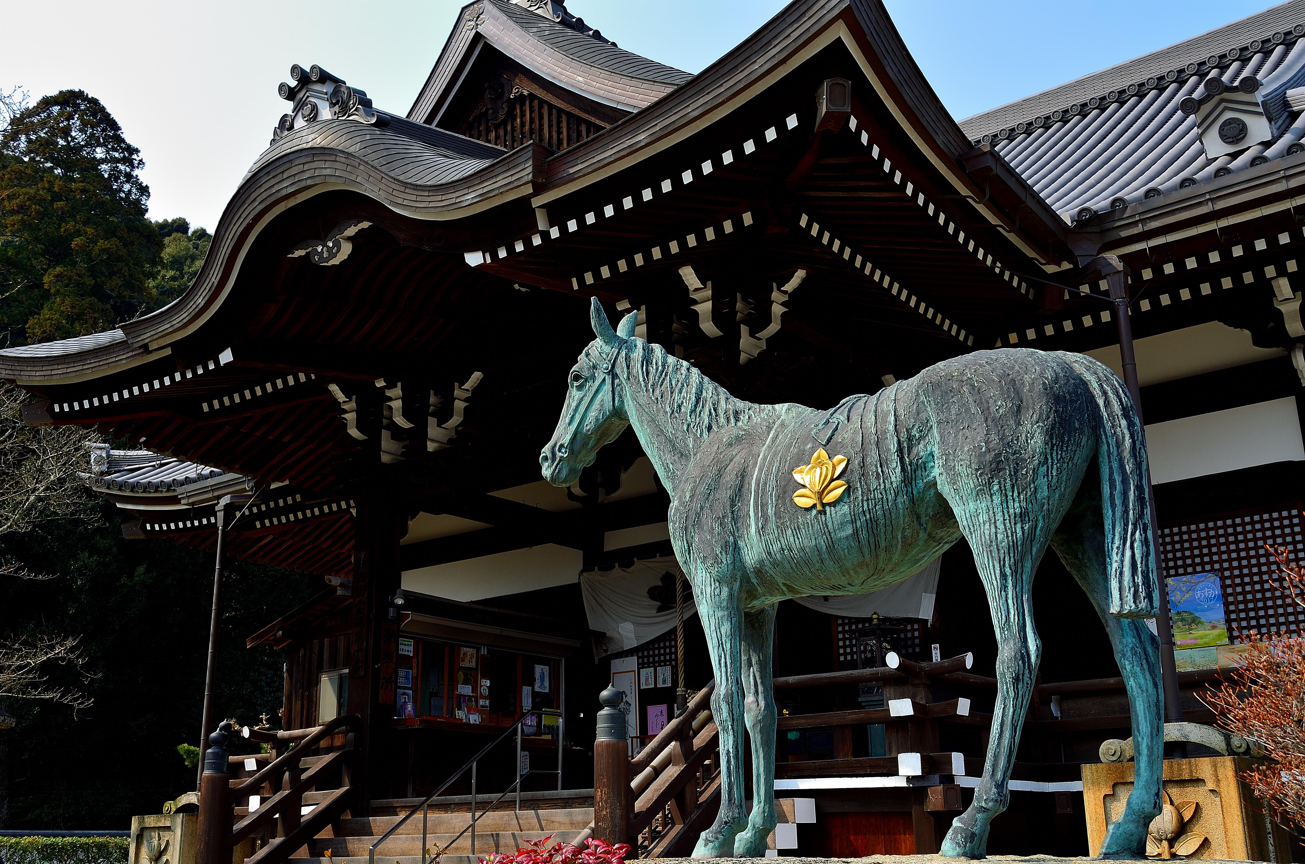 橘寺 黒の駒
