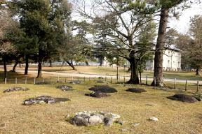 奈良国立博物館 春日西塔跡